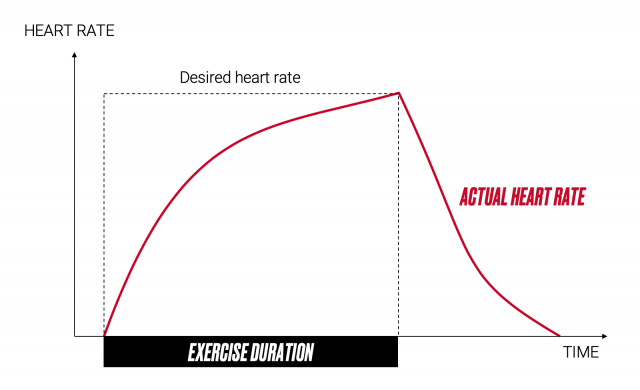 Heart rate during exercise - power vs heart rate