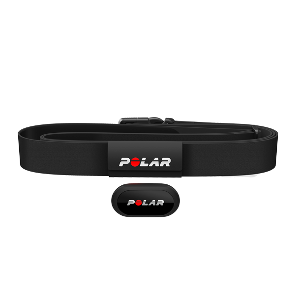 Polar Equine heart rate monitor for trotters